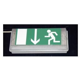 Nooduitgangverlichting (incl pictogram)
